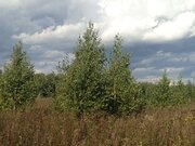 Продаю земельный участок 15 соток вблизи Троицка