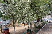 Апартаменты на Арбате от собственника - квартира бизнес класса, Квартиры посуточно в Улан-Удэ, ID объекта - 319634695 - Фото 8