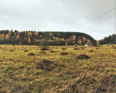 Участок в юго-западном направлении Карелии - Фото 3