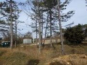 Участок 5 соток в Севастополе у соснового леса- мечта для жизни! - Фото 5