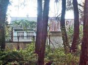 Абхазия. Пицунда. Одноэтажный кирпичный дом - 60 кв.м. + гостевой. - Фото 5