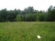 13 гектар кфх в Василево, Переславский район - Фото 5