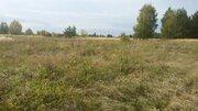 Продам земельный участок в деревне Пестенькино - Фото 2