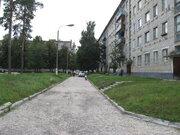Недорого продаю квартиру в пгт. Белоомут, хорошее состояние, рядом лес - Фото 1