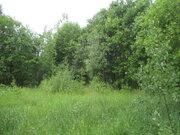 Участок, Ярославское ш, 133 км от МКАД, Ширяйка д. Ярославское шоссе, . - Фото 4