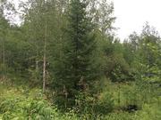 Идеальное место для любителей нетронутой природы Земельный участок - Фото 4