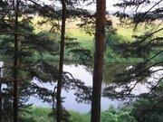 Уникальный лесной участок на берегу в стародачном поселке Мозжинка - Фото 5