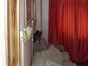 Продажа двухкомнатной квартиры на Октябрьском проспекте, 70 в Кирове, Купить квартиру в Кирове по недорогой цене, ID объекта - 319841011 - Фото 1