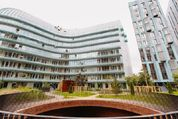 Продается квартира г.Москва, Трубецкая, Купить квартиру в Москве по недорогой цене, ID объекта - 320733819 - Фото 24