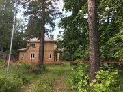 Участок 6 сот с вековыми соснами в Расторгуево с коммуникациями - Фото 3