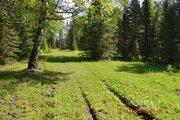 Продажа участка, Артыбаш, Турочакский район, Ул. Телецкая - Фото 2