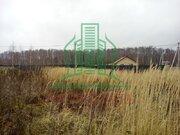Участок 10 соток в подмосковной деревне с видом на лес, недалеко пруд - Фото 3