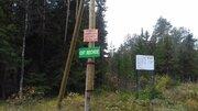 Продам земельный участок в дачном кооперативе - Фото 5