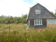 Дачи в Ленинградской области