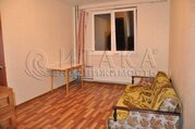 Аренда квартир в Мурино
