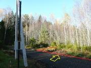Участок 9,5 соток с молодым лесом, ПМЖ, эл-во 15 квт, дер. Таширово. - Фото 2