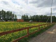 Продаю участок, ш. Горьковское, 50 км, Грибовское - Фото 2