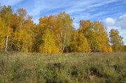 Участок 20 соток вблизи с. Татариново, в д. Рудины - Фото 3