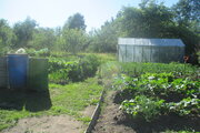 Ухоженный участок с садом и огородом