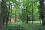 Лесной участок в стародачном поселке на Рублевке - Фото 1