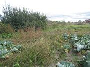 Продам земельный участок с домом в с.Панино - Фото 5