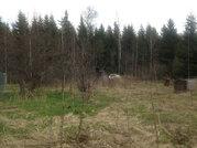 """Продаётся участок с садовым домиком в СНТ """"Мечта"""" Талдомского района - Фото 3"""