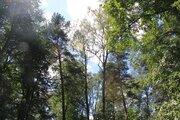 Лесной участок на территории санатория, рядом река, экология, тишина. - Фото 2