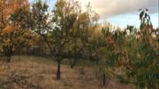 Продажа земельного участка в Симферополе с недостроем. - Фото 3