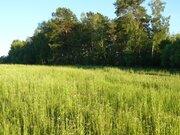 Деревня Митино участок 12,4 гектара Заокский район Тульская область - Фото 4