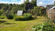 Дачный участок вблизи села Душоново 45 км от МКАД - Фото 4