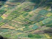 Земельный участок в Малиновке Зеленоградского района