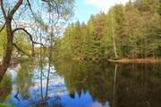 Новая дача в красивейшем СНТ у озера , окруженным сосновым бором - Фото 1