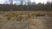 Участок 16 соток ИЖС в Снетково под Приозерском - Фото 4