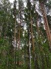 Земельные участки, Зеленый бор (Горный Щит), Рыбоводов, д.14 - Фото 3
