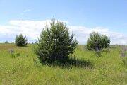 Участок в Гдовском районе, Земельные участки Ветвеник, Гдовский район, ID объекта - 201324440 - Фото 7