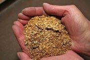 Действующий бизнес по добыче золота