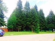Лесной участок с соснами. 15 соток 6,5млн - Фото 5