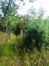 Продается земельный участок в тихом и живописном п. Кацивели! - Фото 2