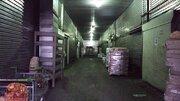 99 000 Руб., Морозильная камера (от 0 до -18). 110 м2. Мытищи. Не дорого!, Аренда склада в Мытищах, ID объекта - 900299426 - Фото 11