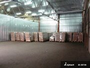 Теплый склад 1800м2 в Перово, Аренда склада в Москве, ID объекта - 900257478 - Фото 5