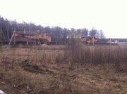 Участок 25 соток ИЖС с лесными деревьями д. Крюково - Фото 2