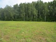 Продам земельный участок в деревне Трухачёво. Серпуховской р-он, М/о - Фото 3