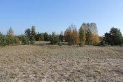 Участок под строительство на первой линии Чудского озера - Фото 2