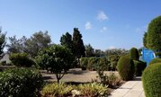 Трехкомнатный апартамент с большой террасой и рядом с морем в Пафосе, Купить квартиру Пафос, Кипр, ID объекта - 323408114 - Фото 17
