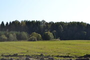 Продам участок 10 соток в кп Рамецкое, 68 км от спб, 50 км от Колпино - Фото 2