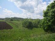 Продам участок 30 соток в д. Семёновское (г. Пущино 5км.) Серп. р-он - Фото 4