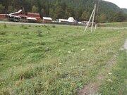 Земельный участок под ИЖС в Горном Алтае - Фото 4