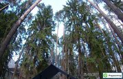 Аренда дома посуточно, Нижний Новгород, Дома и коттеджи на сутки в Нижнем Новгороде, ID объекта - 502366082 - Фото 19