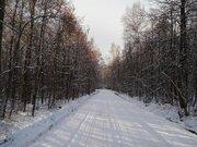 Участок 6 соток в газифицированном СНТ Родина, г.о. Подольск - Фото 4