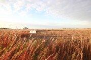 Земельный участок в южном - Фото 4